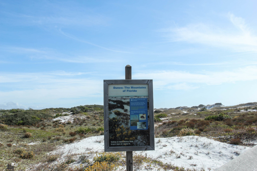 Camping At Topsail Hill Preserve State Park