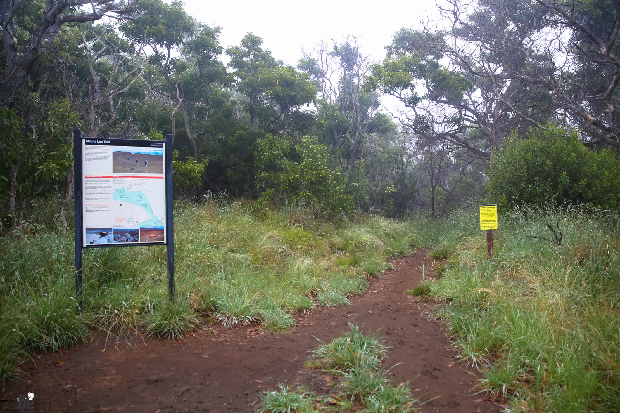 Hiking the Mauna Loa Trail
